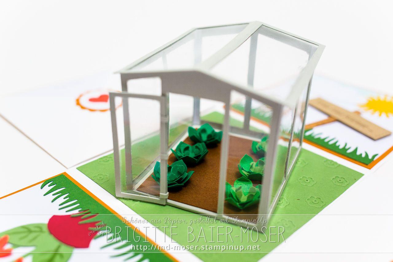 Explosionsbox Mit Gewachshaus Explosionsbox Schachtel Selber Basteln Und Diy Explosionsbox