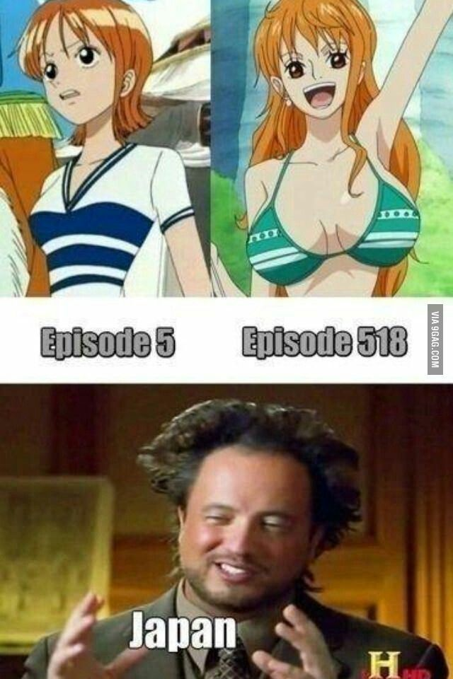 """""""Animes"""" - Only in One Piece"""