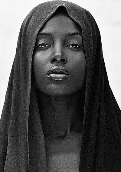 zwarte Ebony Fotos