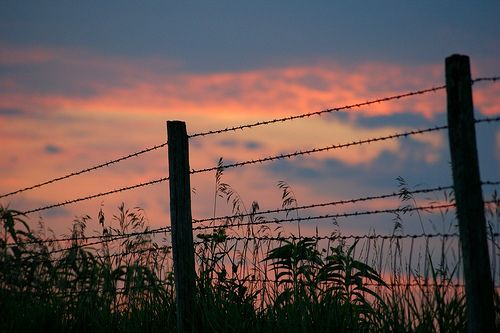 You Can't Fence Out a Sunset by Misty Dawn Seidel (Misty DawnS Photography)