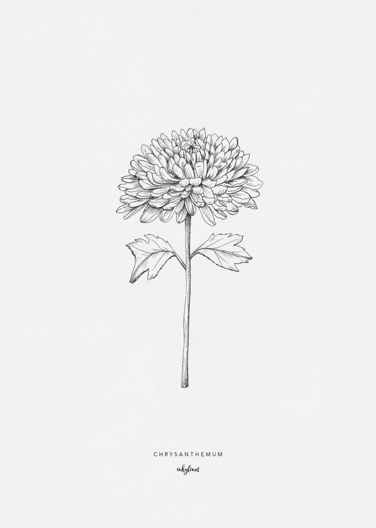 Printables Chrysanthemum Ink Tattoo Ink Master Tattoos Brown Tattoo Ink