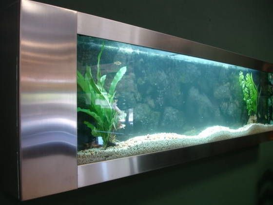 Fish Tank Wall Mounted Aquabella Plasma Fishtankaquarium Wall Mount Fish Tank  Amazon .