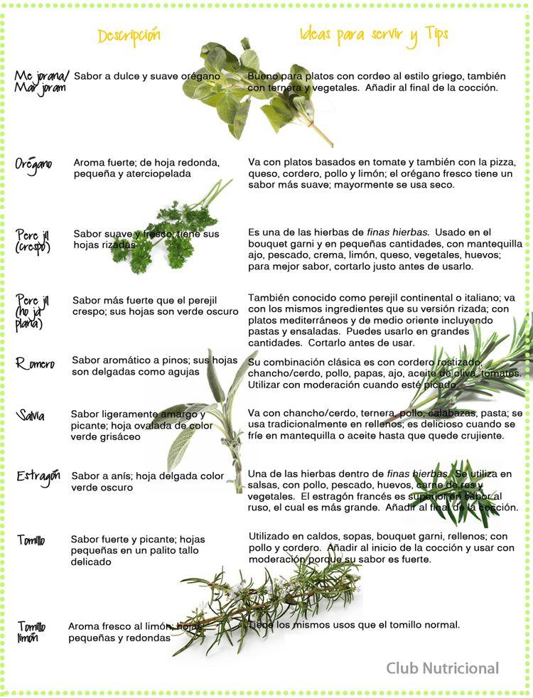 Uso de hierbas para cocinar aperitivos y comidas for Plantas aromaticas para cocinar