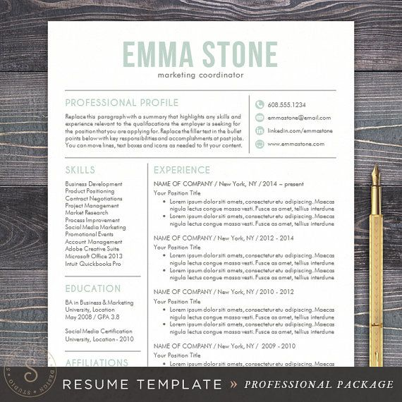 Resume Template CV Template for Word Mac by TheShineDesignStudio