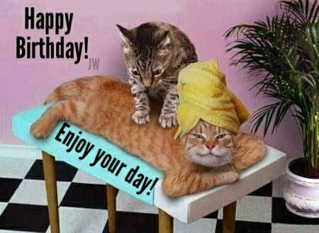 happy birthday with 2 cats birthday. Black Bedroom Furniture Sets. Home Design Ideas