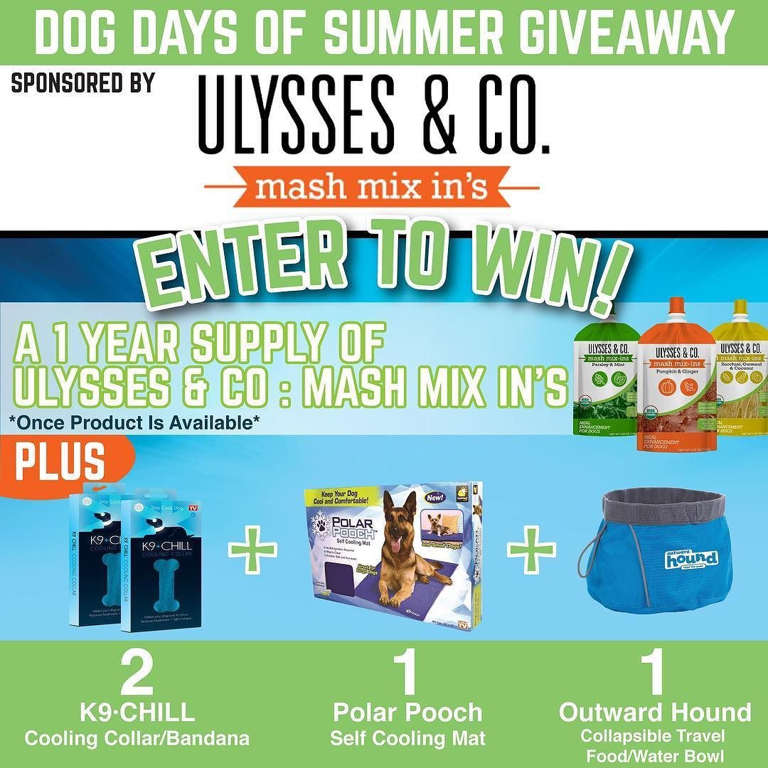 DOG DAYS OF SUMMER GIVEAWAY: Hey Everyone! We're running a sweepstakes and giving away prizes to help your pup beat this crazy summer heat! Just click the link in our bio and then select the Sweepstakes tab on the left to sign up. Good luck! ________________________ #dogdaysofsummer #summer #dogdaze #dogsofinstagram #dogsofig #dogfood #happydog #prizes #giveaway #luckydog #hotdog