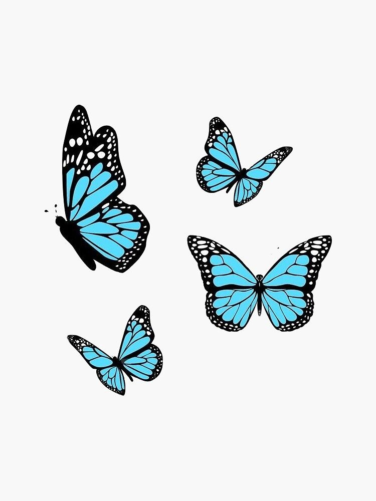 7314e1223a17884951ac3274eb69f5b4 » Butterfly Drawing Aesthetic