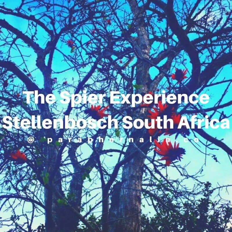 South africa · Stellenbosch ...