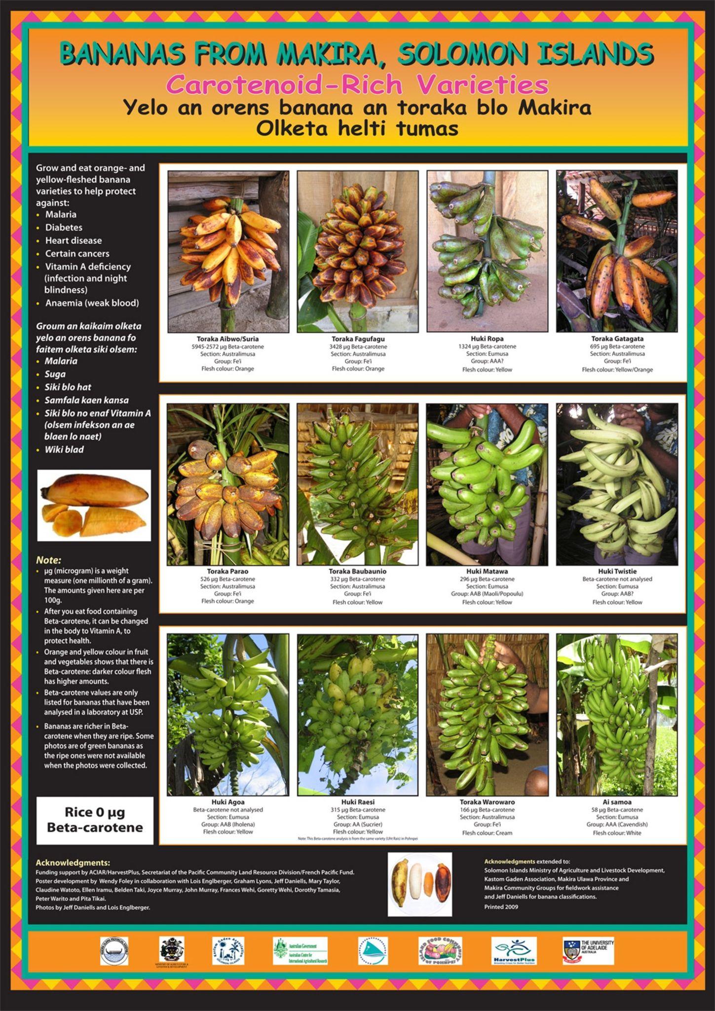 Makira Banana Poster Ifcp With Images Plants Garden Banana