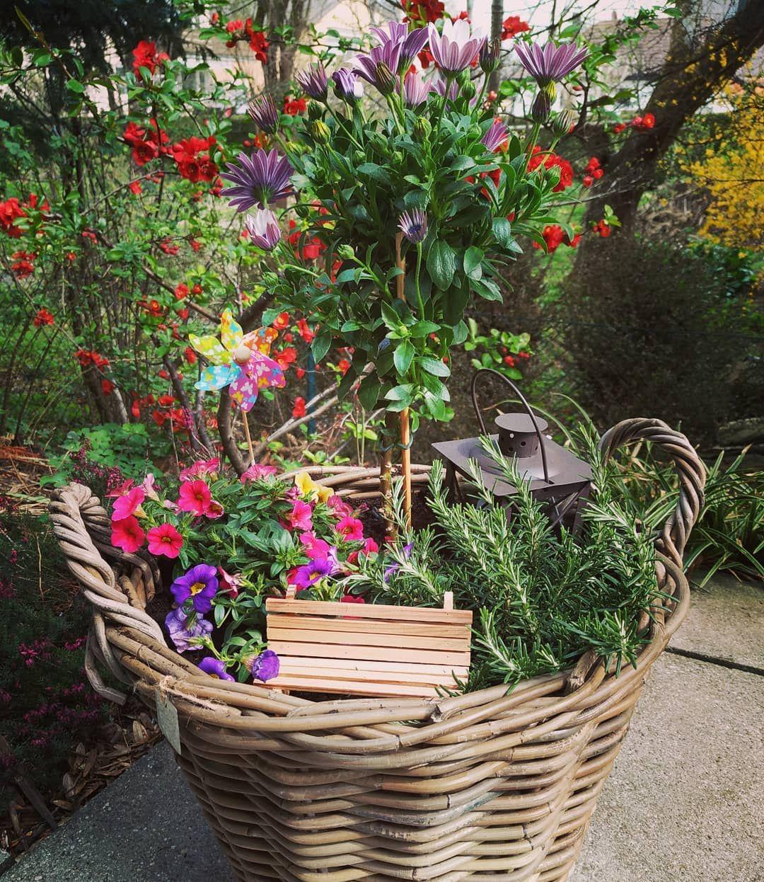Da nun mein Schwiegerpapa seinen runden Geburtstag feiert und viel in seinem Garten werkelt…