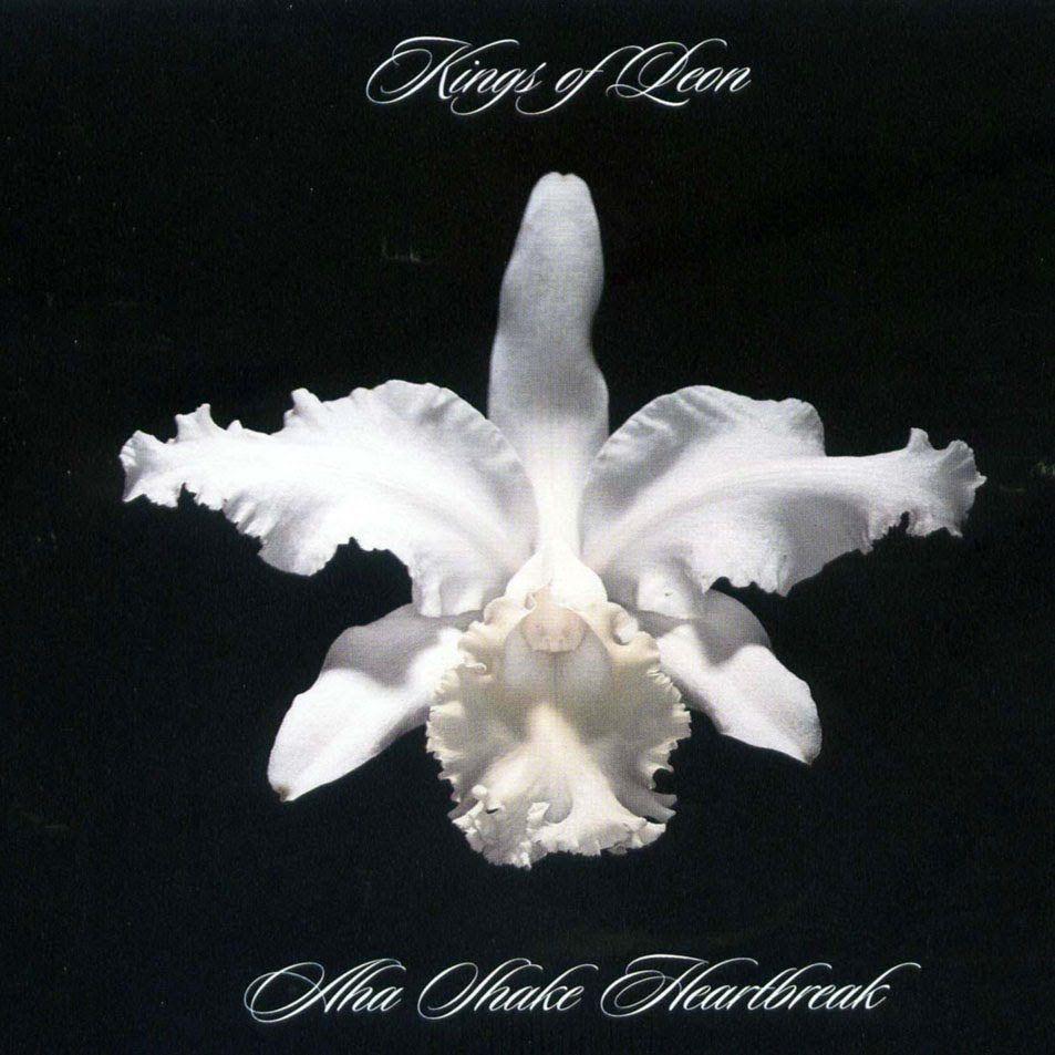 Kings Of Leon Aha Shake Heartbreak Full Album Kings Of Leon Great Albums Heartbreak