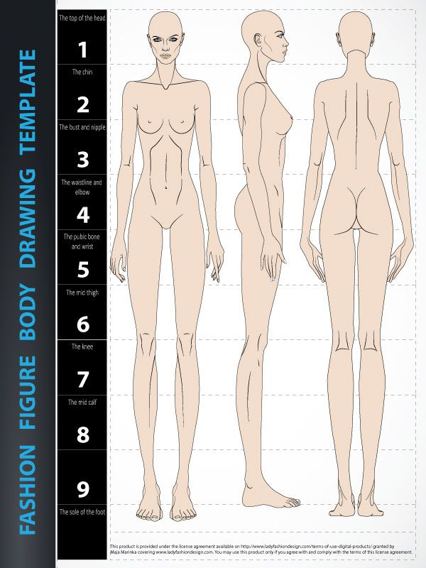 Body Drawing Template 9 Heads