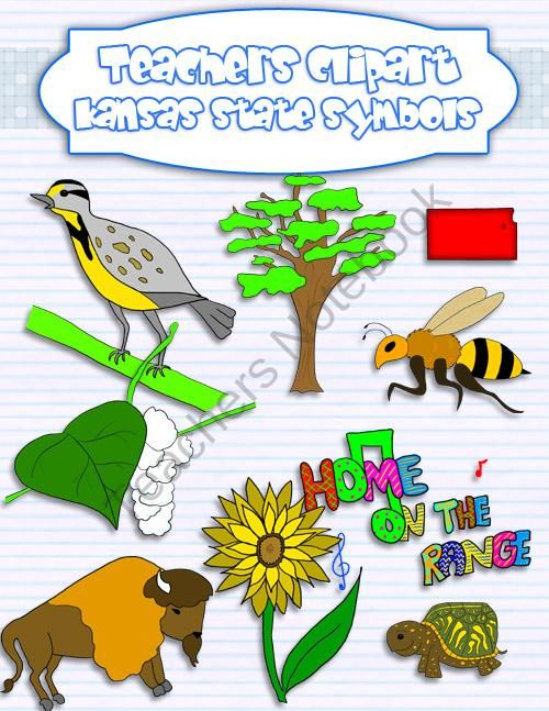 Kansas State Symbols Clipart Product From Teacher S Clip Art On