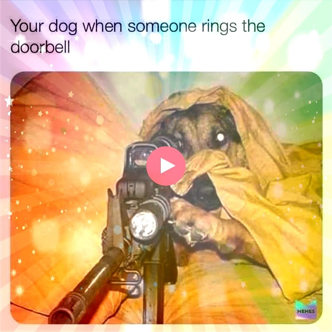 Memes  Hilarious memes that will make you laugh out loud Need a good laugh Have a look at these hilarious memes on Memes Galore Im sure at least some of these funny memes...