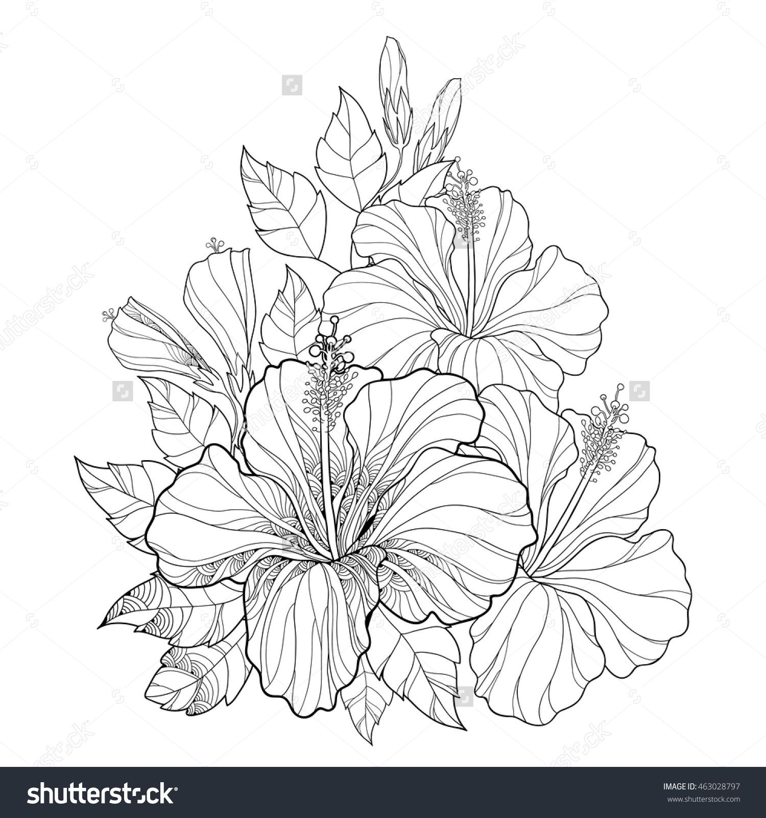 Vector Bouquet With Chinese Hibiscus Or Hibiscus Rosa Sinensis