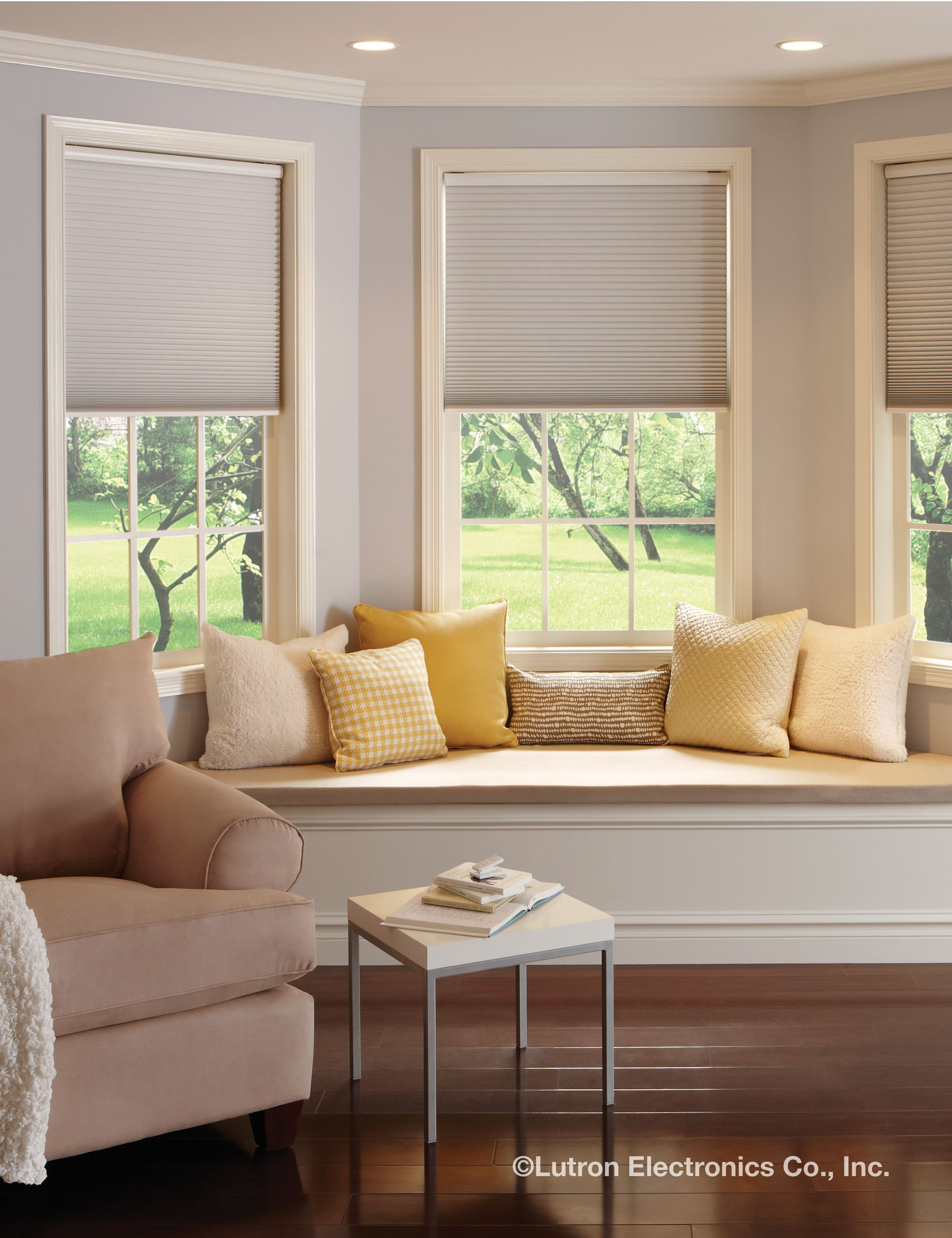 motorization wireless motorized automated power flagstaff blinds