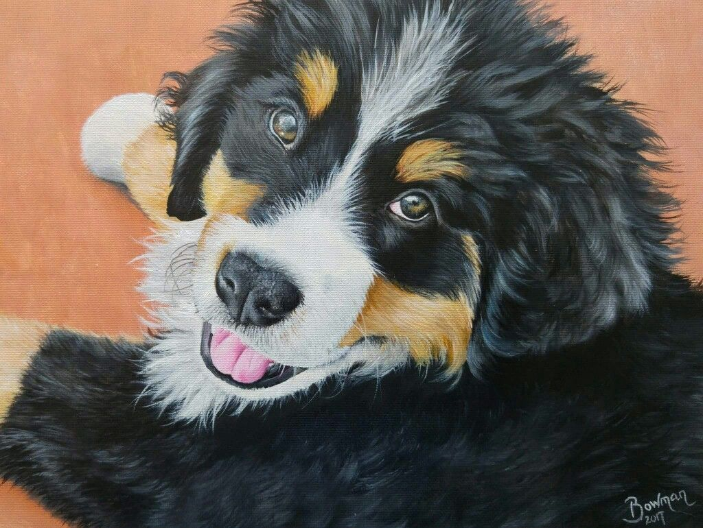 Bernese mountain dog puppy oil painting Dog portrait by