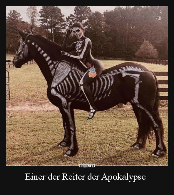 Einer der Reiter der Apokalypse..