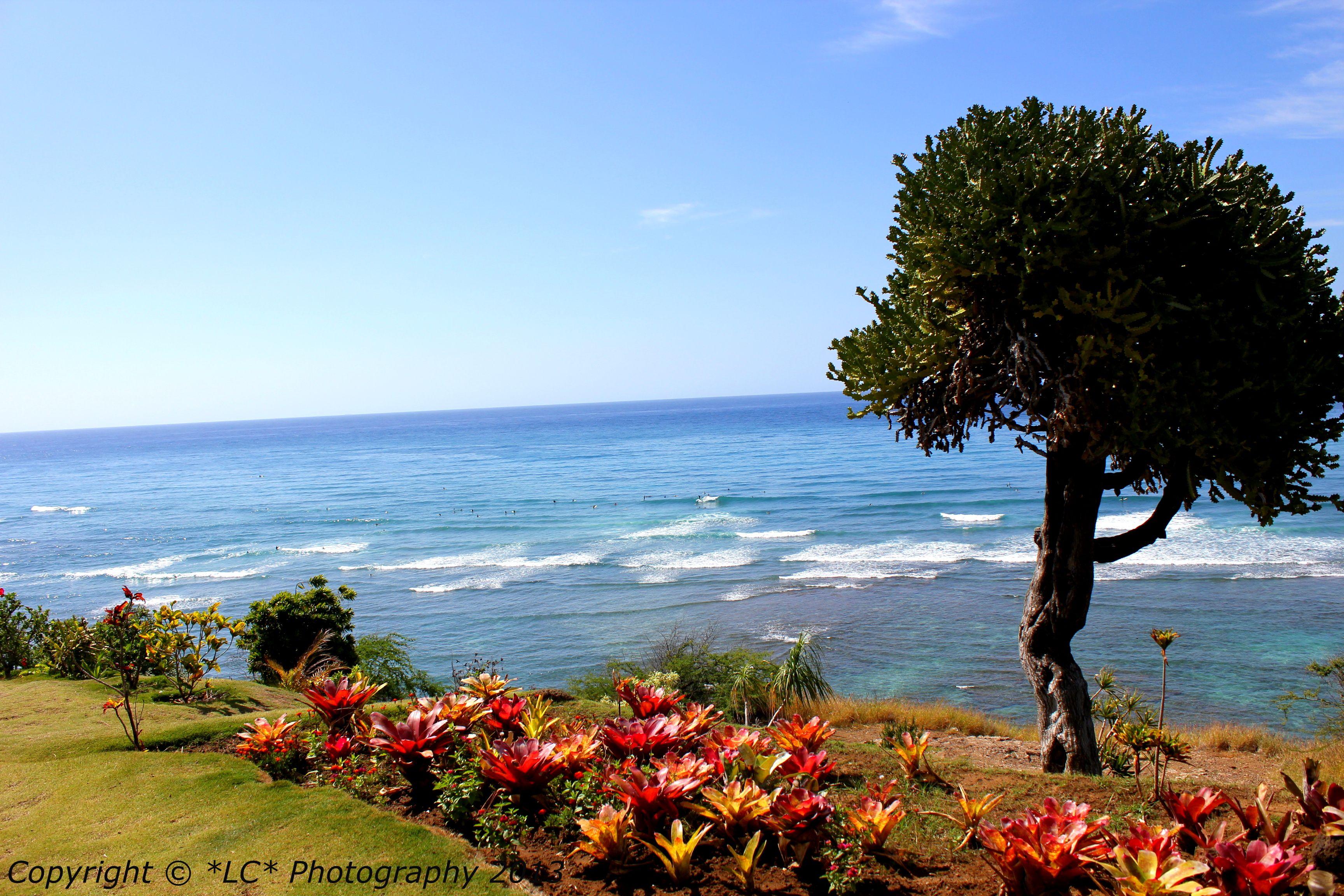 Scattered surfers over Diamond Head Beach Park (Honolulu, HI)