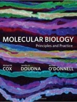 Molecular Biology Principles And Practice Pdf Download Here