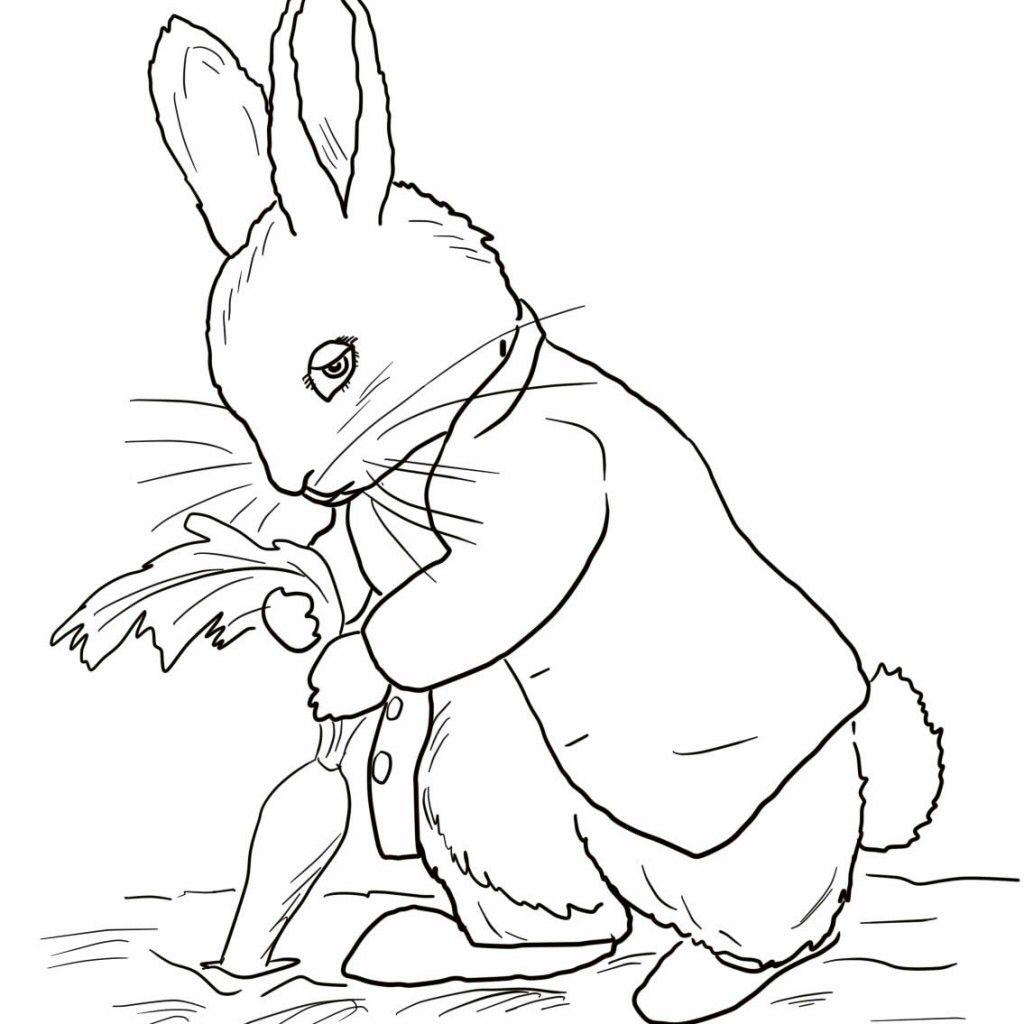 Image From Http Kidscoloring Pics Wp Content Uploads Peter Rabbit Stealing Carrots Color Bunny Coloring Pages Unicorn Coloring Pages Peter Rabbit And Friends