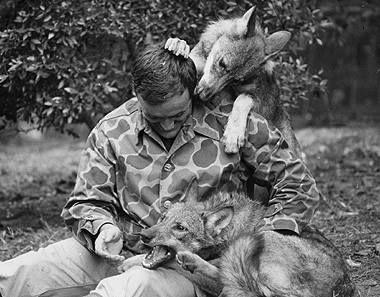 Felix Rodriguez De La Fuente Con Los Lobos Felix Rodriguez Felix Animales