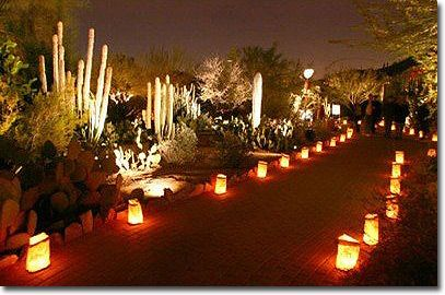 Ordinaire Luminarias At The Desert Botanical Garden AZ