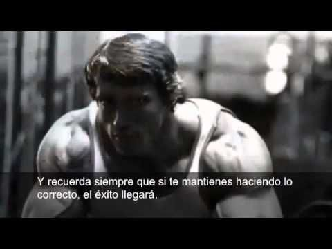 Pin By Julio León On Culturismo Arnold Schwarzenegger Gym