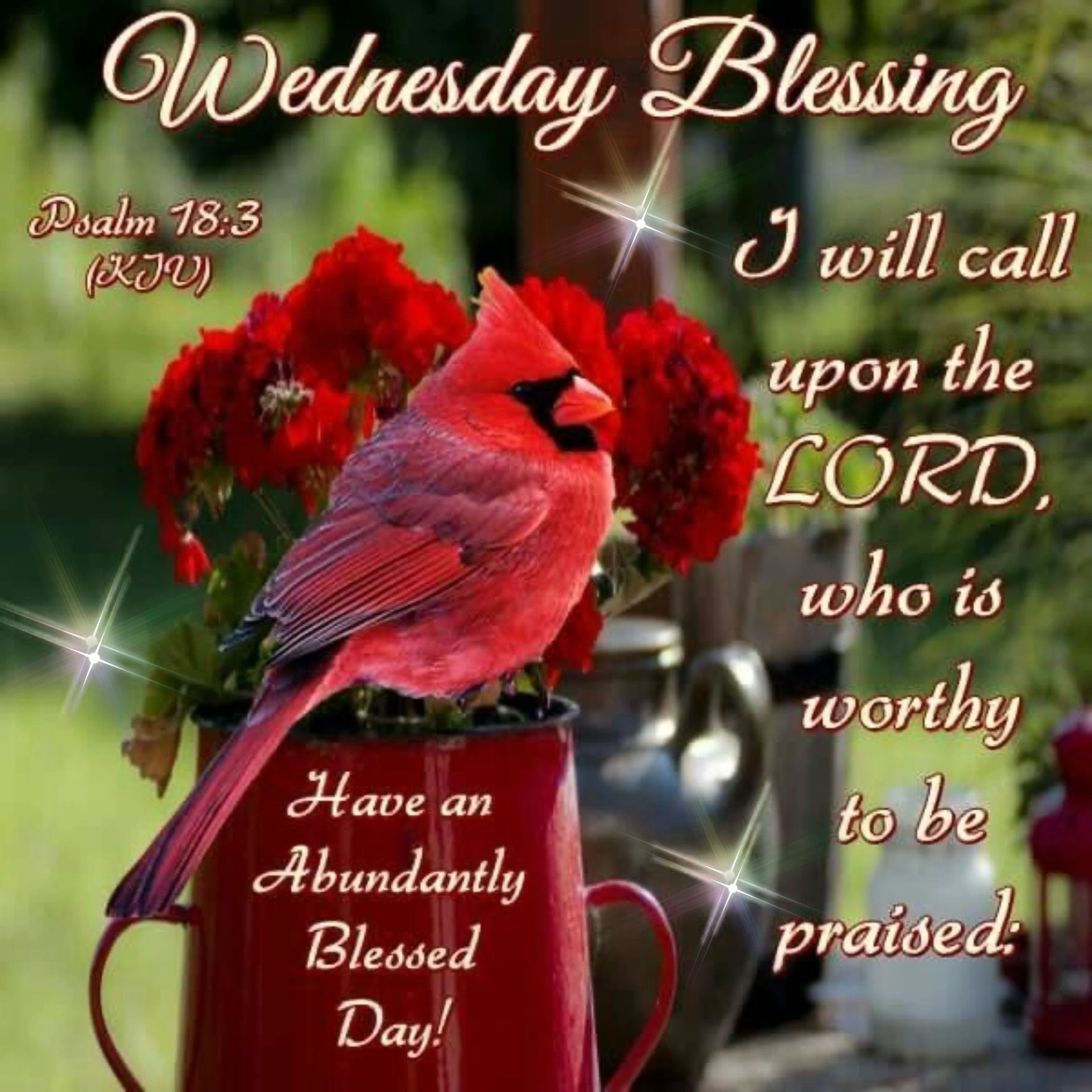 630 Daily blessings Wednesday ideas in 2021   blessed wednesday, wednesday  quotes, morning blessings