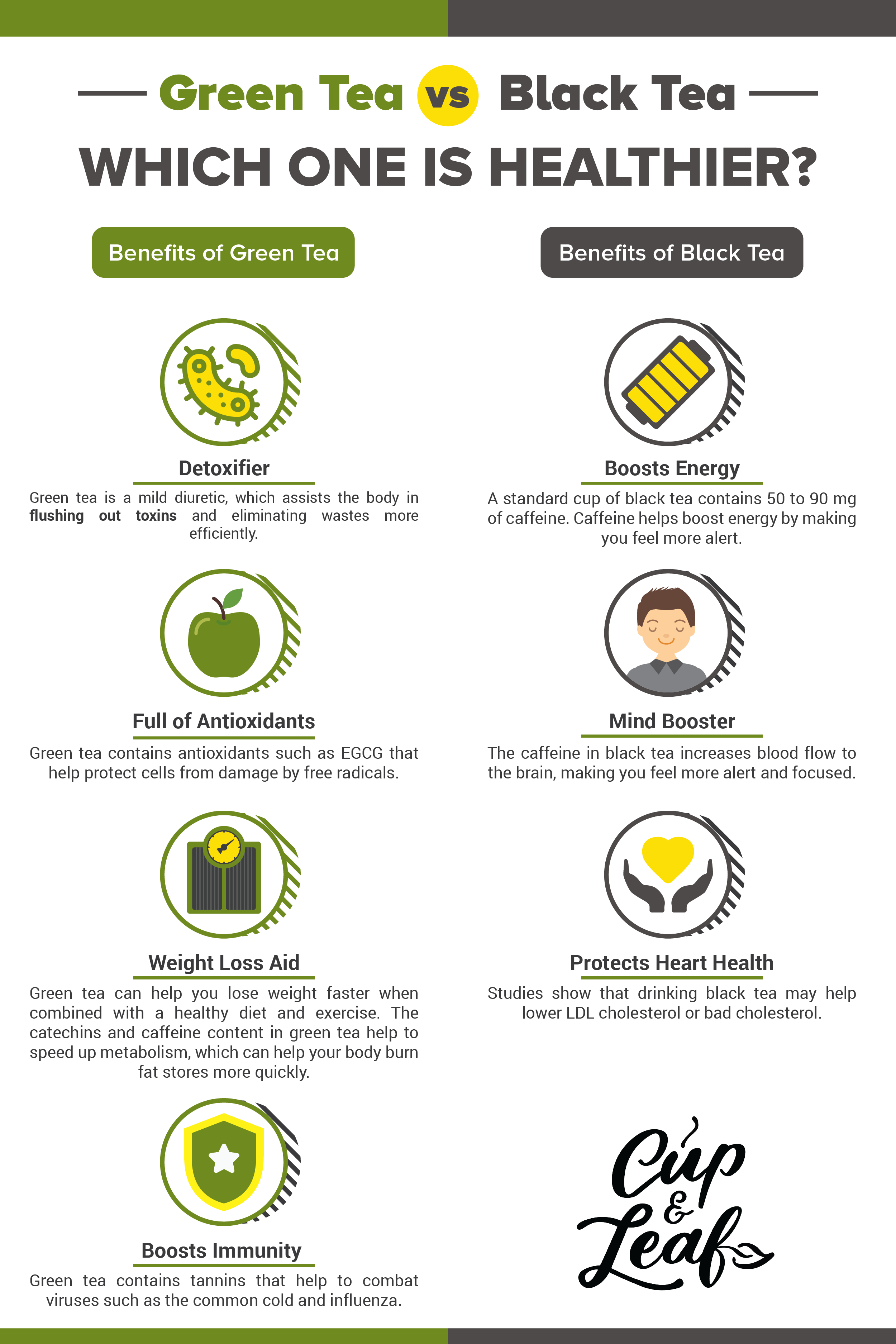 Green Tea vs. Black Tea Which One is Healthier Cup