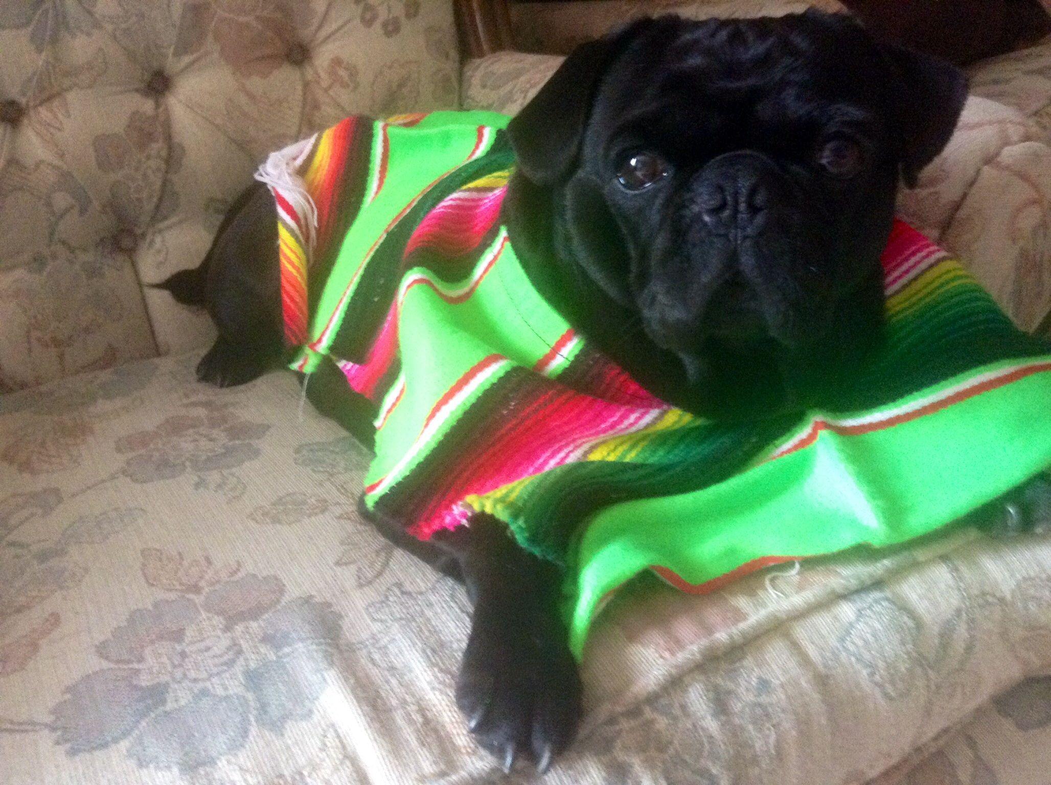 Dalila con su sarape muy mexicana