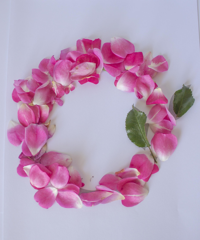 """Pretty Floral Letter """"O""""."""