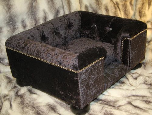 A Complete Guide To Luxury Dog Sofa U2013 Please Make The Right Choice   Best  Sofas   Do You Agree That Dogs Are No Less Than Members Of A Family To Most  ...