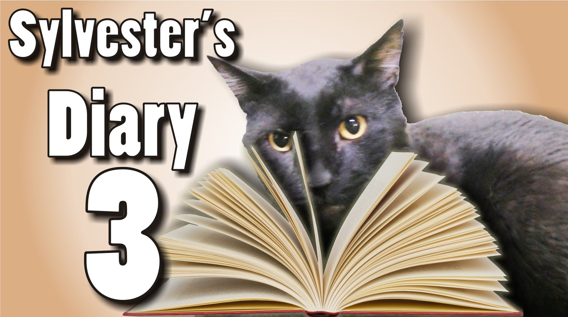 Sylvester's Diary 3 Talking Kitty Cat Cat diary, Cat