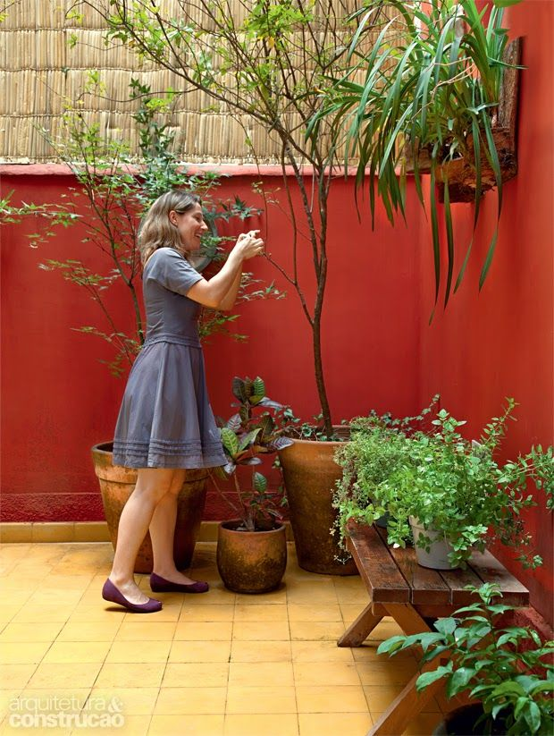 Muros e paredes coloridas no jardim jardin for Decoracion de jardines y muros exteriores