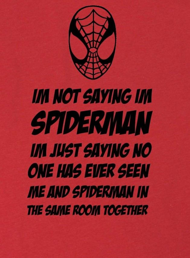 Image result for funny spiderman