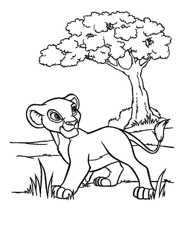 Simba Walking In The Meadow The Lion King Coloring Page Lion