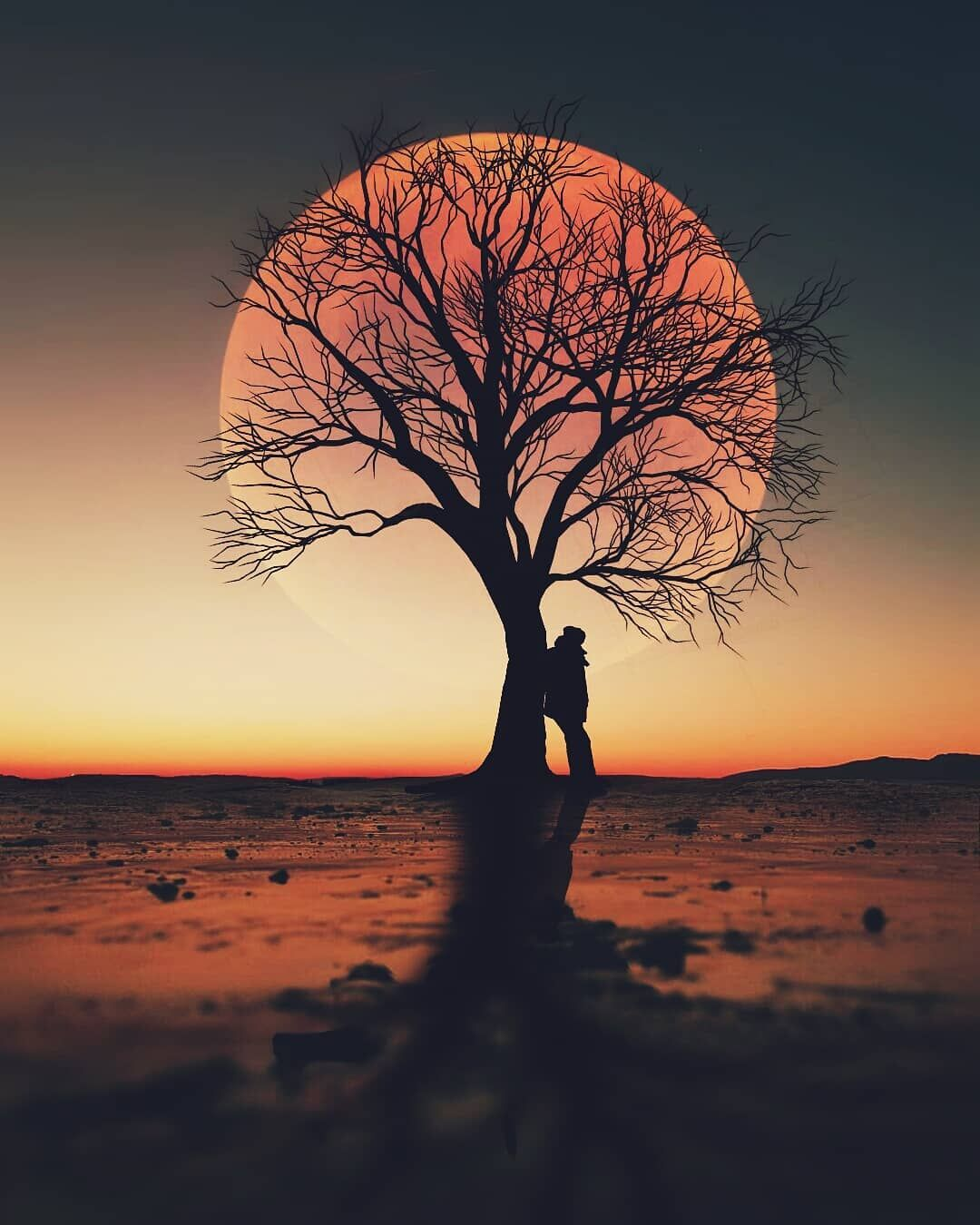 Turkish Artist Abdullah Evindar Creates Fantastic Surreal Silhouette Photo Collages Beautiful Profile Pictures Silhouette Photos Silhouette Photography