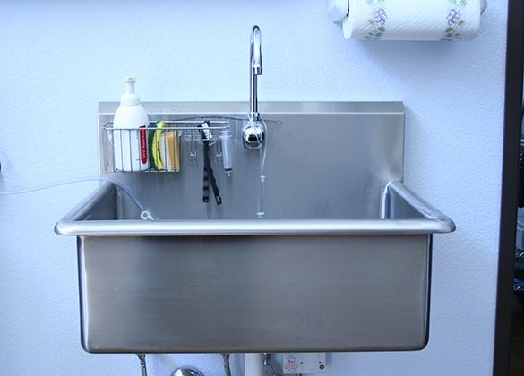 Nice Sculpture Of Dog Wash Sink: Tips Before Buying