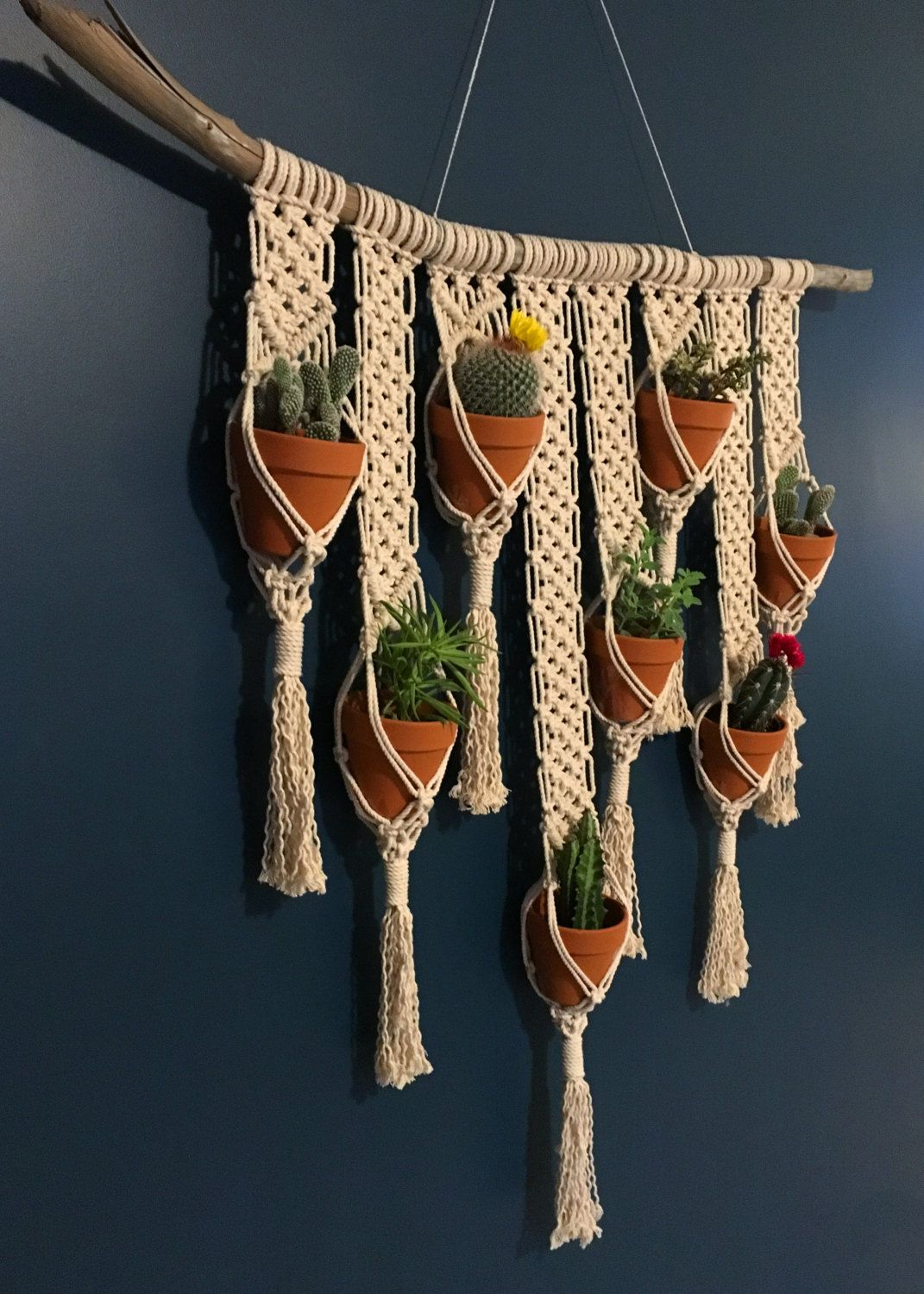 Large macrame wall plant hanger on natural driftwood cotton rope