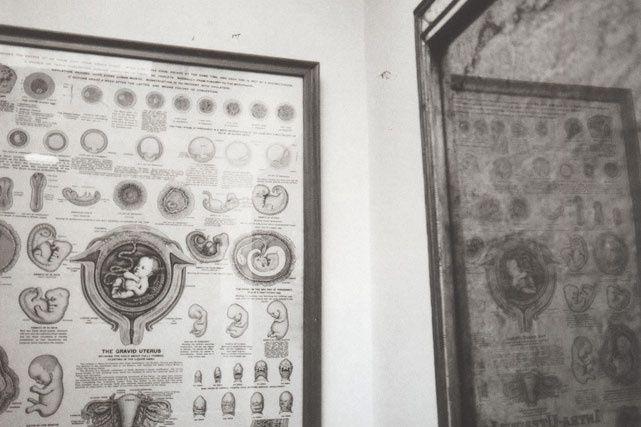 Pásale al baño de Frida Kahlo