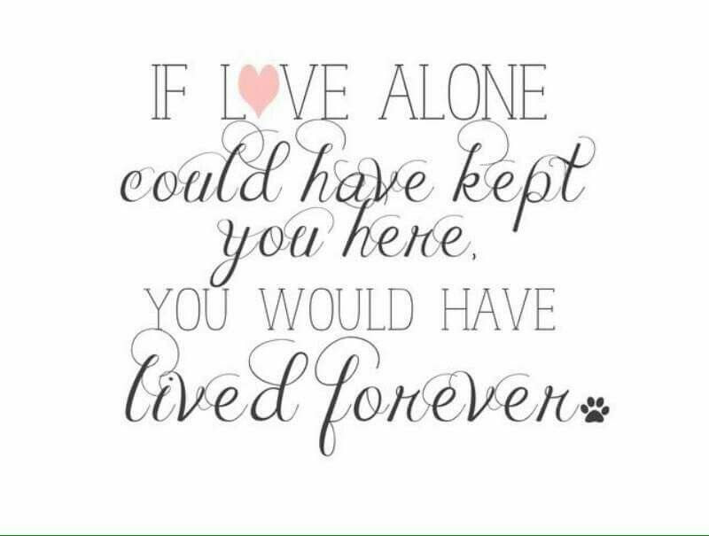 If Love alone could have kept you here, you would have