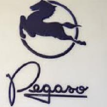 Pegaso fue la marcacomercialde la empresaespañolaENASA(ahora integrada en elconsorcio Iveco ) utilizada en susautomóvilesycamio...