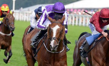 667573df83c LEADING LIGHT (IRE) wins the Queens Vase (gr3) at Ascot