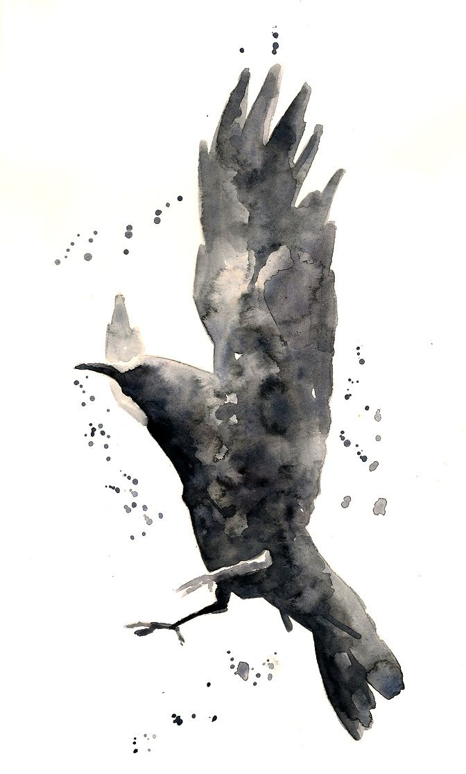 Crow Raven Tattoos Black Bird Watercolor Tattoo Watercolor Raven