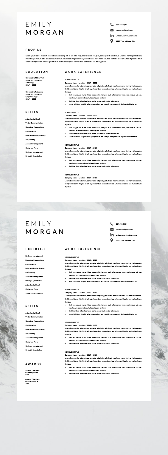 resume template modern best resume layout professional