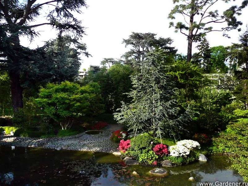 Сад Альбер-Кан | Ландшафтный дизайн садов и парков