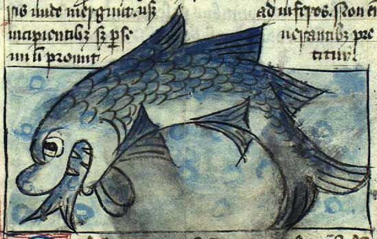 Image result for medieval whale