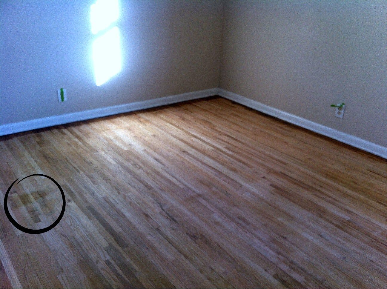 Removing Urine Stains From Hardwood Floors Staining wood