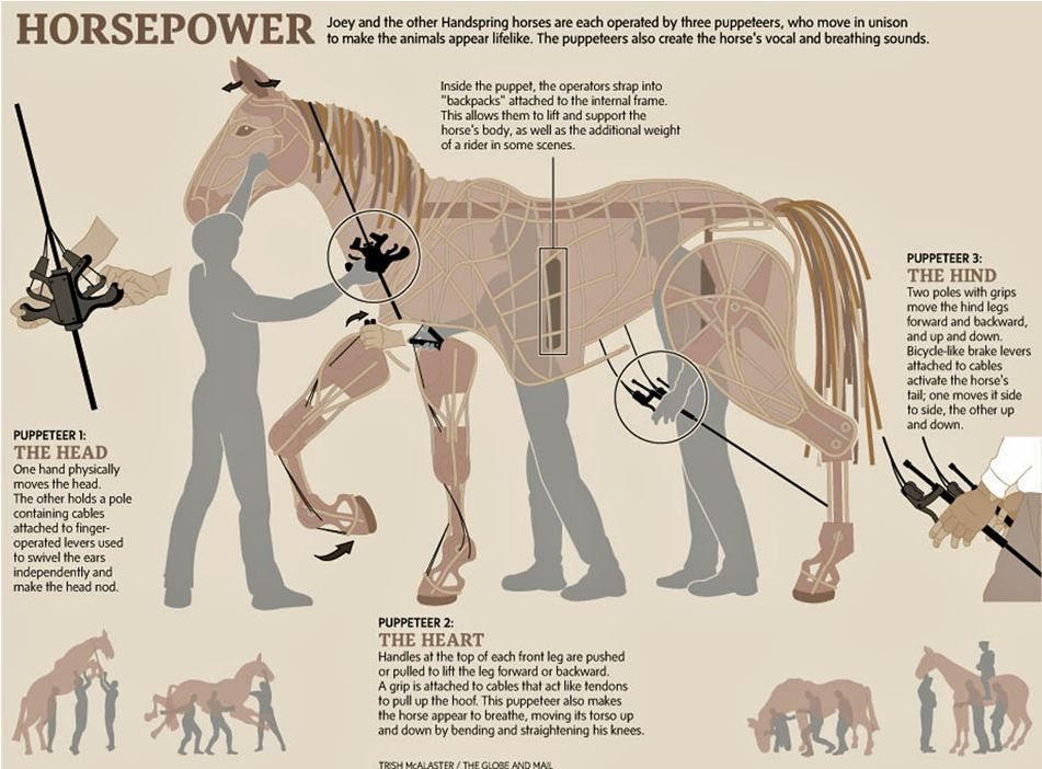 Horse Leg Diagram With Brakes - All Kind Of Wiring Diagrams •